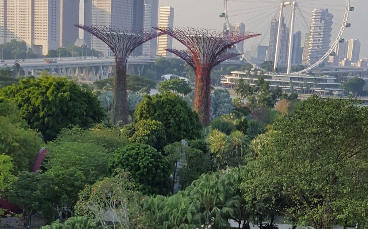 Singapur… la ciudad más limpia y verde del mundo