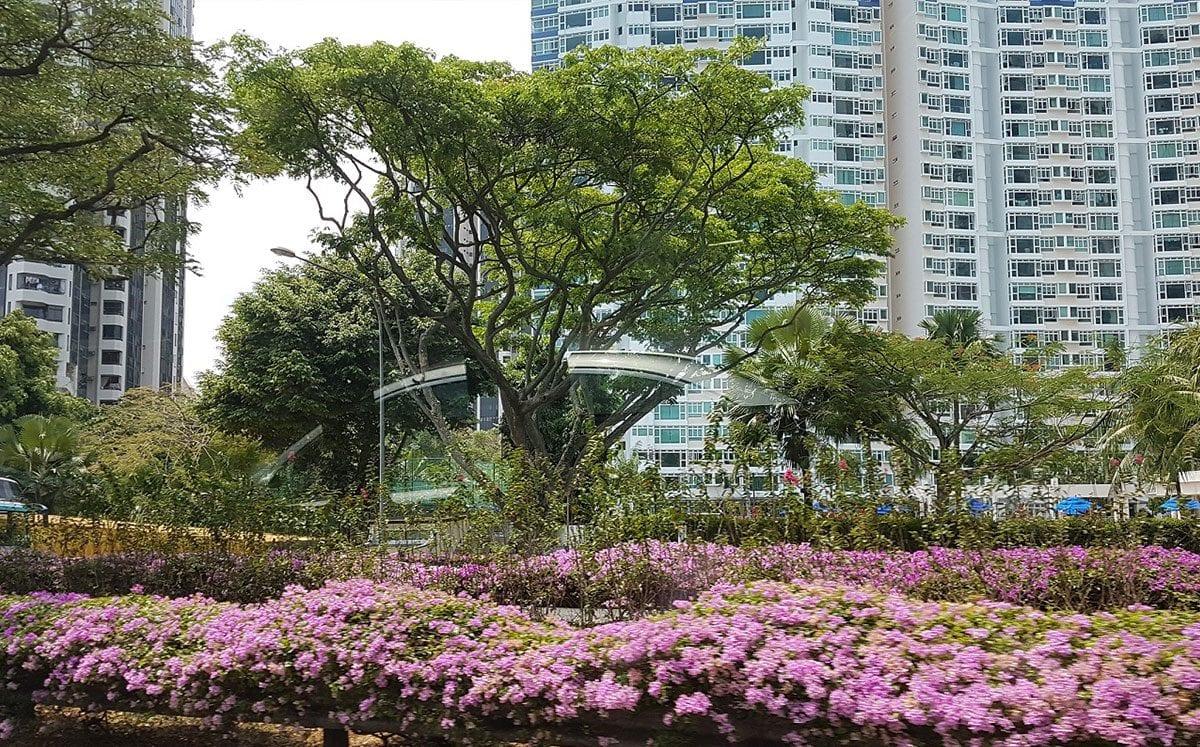 Singapur… la ciudad libre de chicle, tabaco… y otras reglas muy específicas…