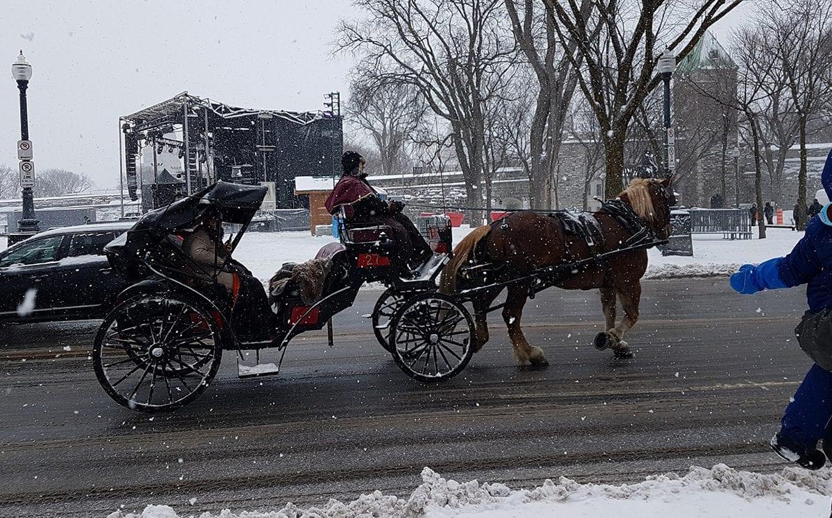 """Romántico paseo en carruaje """"calèches""""… tirado por caballos"""