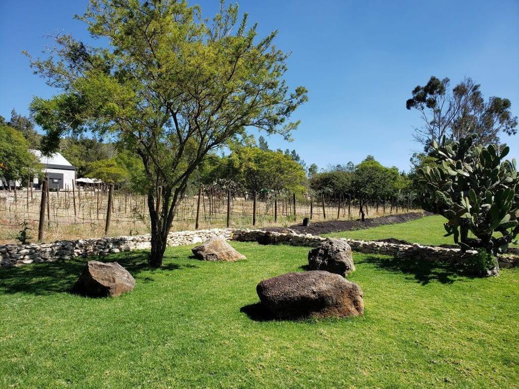 Bodegas VaiVén… sueño del vino